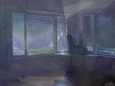 al di qua delle persiane  - by criBo