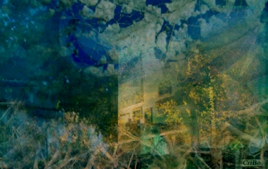 contrasti -  by CriBo