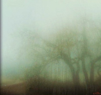 nebbia - by criBo