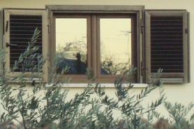 riflessi nella finestra