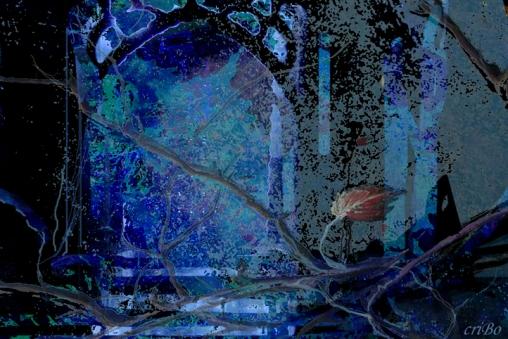 inverno - by criBo