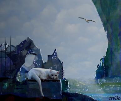 la gabbianella e il gatto - by criBo